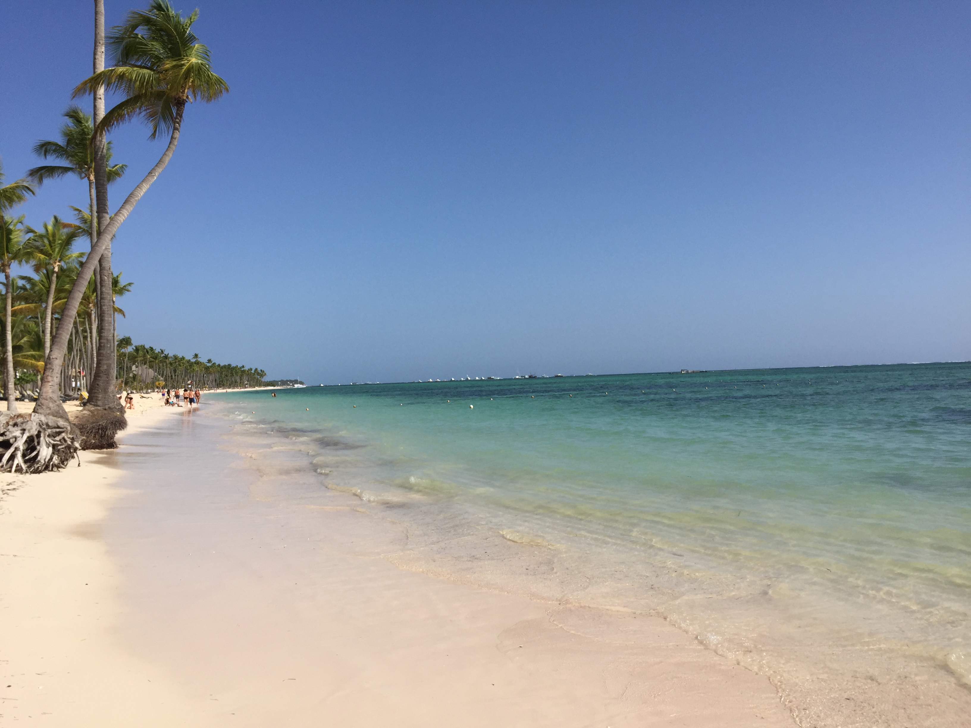 Barcelo Bavaro Palace Deluxe Review